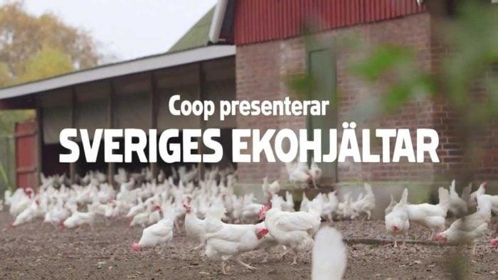 スウェーデンの生卵