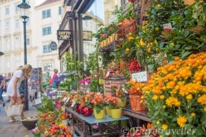 ウィーン観光