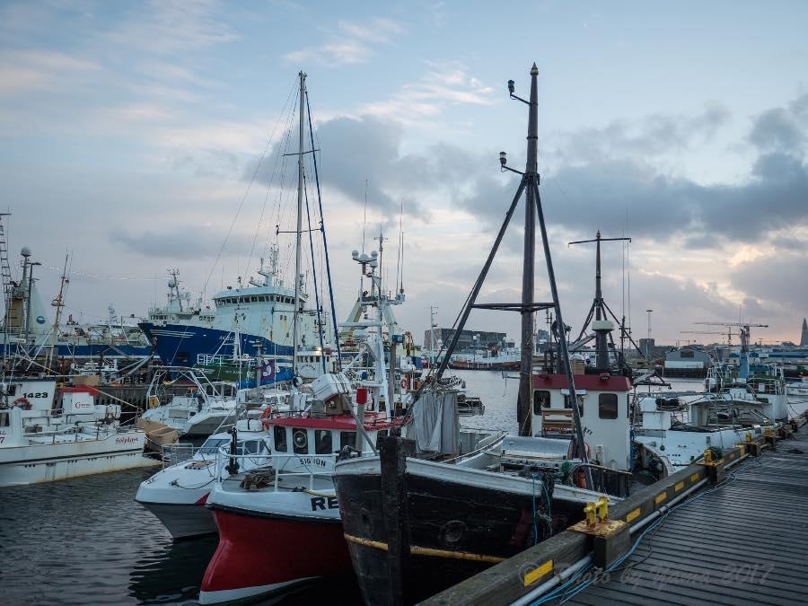 アイスランドの漁港