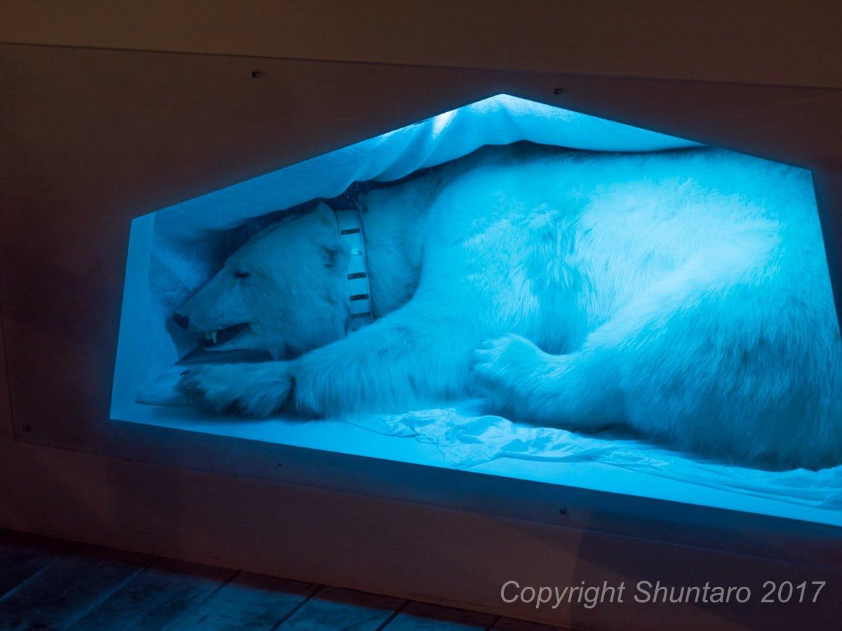 北極水族館