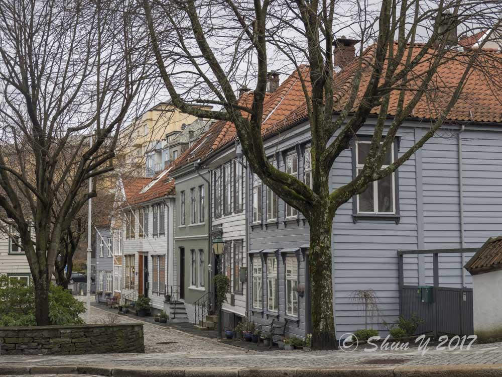 ノルウェー家屋